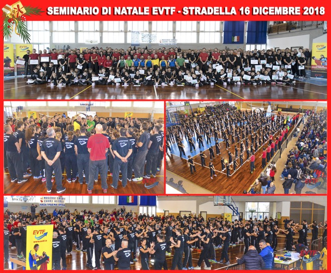 Collage-Seminario-Stradella-16-12-2018